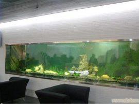 上海定做鱼缸,定做鱼缸