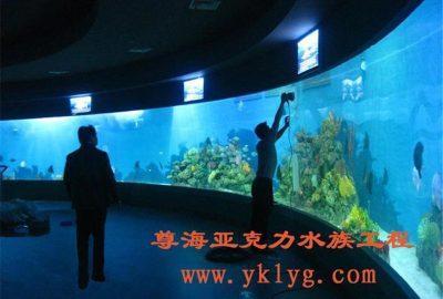 上海订做鱼缸-鱼缸设计