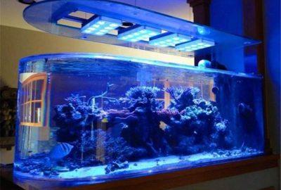 北京观赏鱼缸定做-鱼缸定做厂家