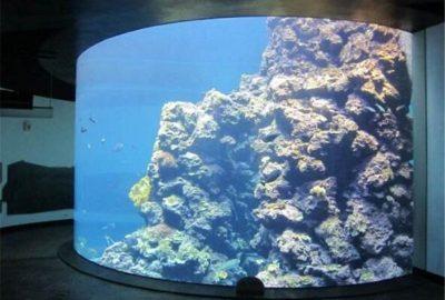 大型观赏亚克力鱼缸定做以及如何保养