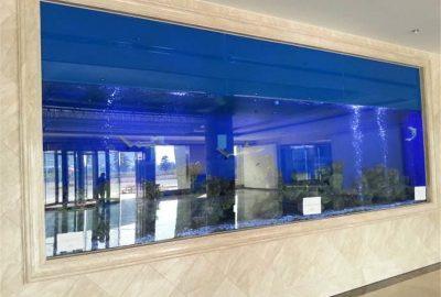酒店亚克力观赏鱼缸免费设计定