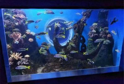 长沙海洋馆-亚克力鱼缸定做