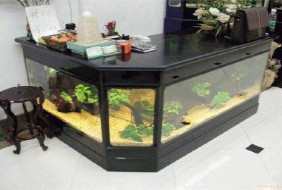 上海亚克力水族工程-鱼缸海洋馆-亚克力鱼缸海洋馆