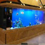 上海亚克力鱼缸|鱼缸定做电话