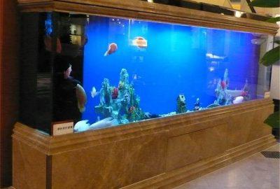 上海亚克力鱼缸 鱼缸定做电话