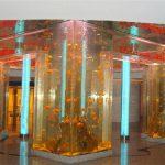 上海亚克力鱼缸|亚克力鱼缸价格