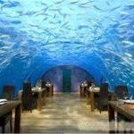 上海有机玻璃鱼缸定做|有机玻璃鱼缸制作|有机玻璃鱼缸