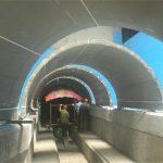 亚克力海底隧道-江苏珊瑚亚克力水族工程