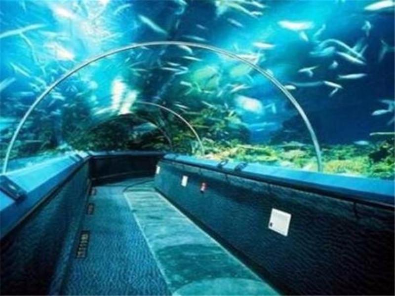 亚克力海底隧道_亚克力弧形鱼缸定做