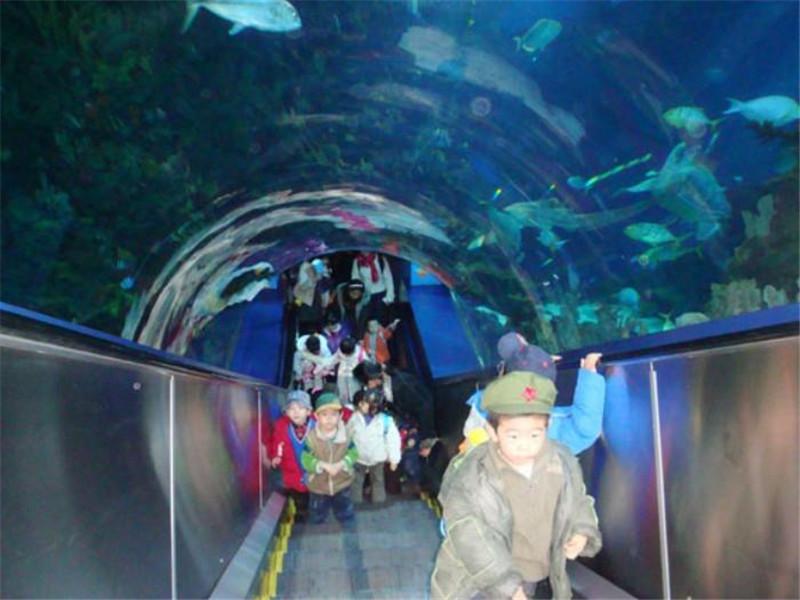 北京亚克力鱼缸定制-北京鱼缸定做厂家