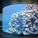 亚克力鱼缸 水下景观施工技术以及工艺特点