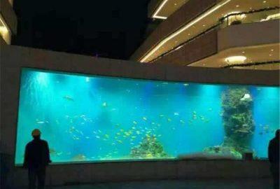 大型观赏鱼缸-北京鱼缸定做厂家