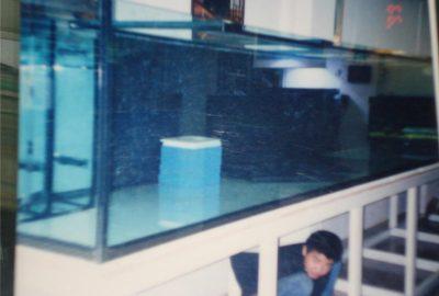 大型有机玻璃鱼缸 有机玻璃制品
