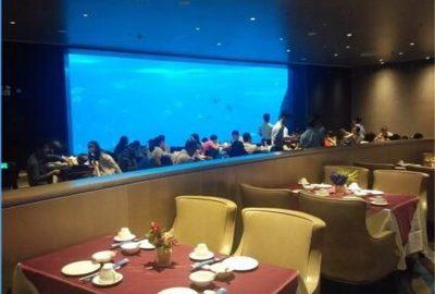 海洋主题餐厅设计_暖冬里的亚克力鱼缸
