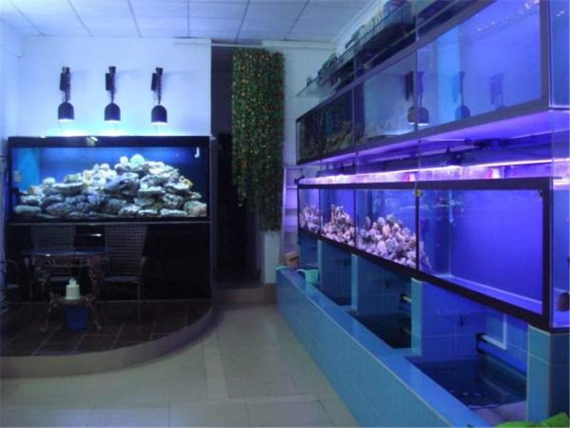 酒店海鲜池定做-杭州海鲜池定做厂家