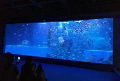 鱼缸定做_亚克力鱼缸_长沙海底世界施工单位