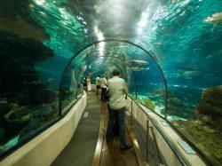 桂林海洋馆